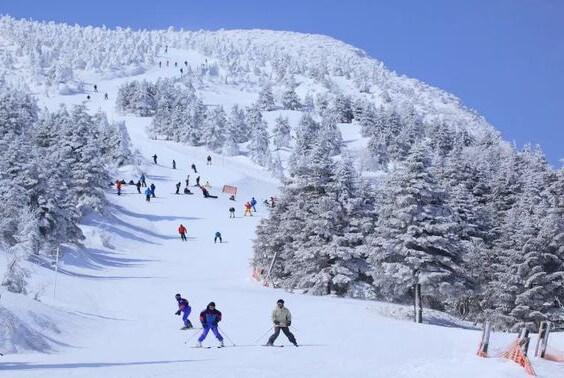 Погода в Японии зима
