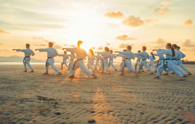 Боевые искусства Японии карате