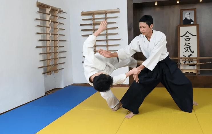 Боевые искусства Японии айкидо
