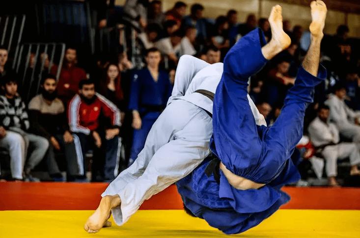 Боевые искусства Японии дзюдо