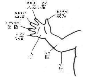 Части тела на японском языке рука